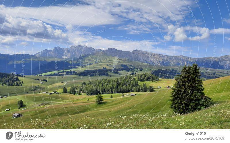 Wandern auf der Seiser Alm Natur Urlaub Grün Landschaft Dolomiten Außenaufnahme Sonne Erholung