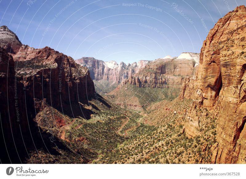 set your eyes to zion. Natur Ferien & Urlaub & Reisen Pflanze Einsamkeit rot Landschaft Ferne Berge u. Gebirge Felsen orange wandern Aussicht Schönes Wetter USA