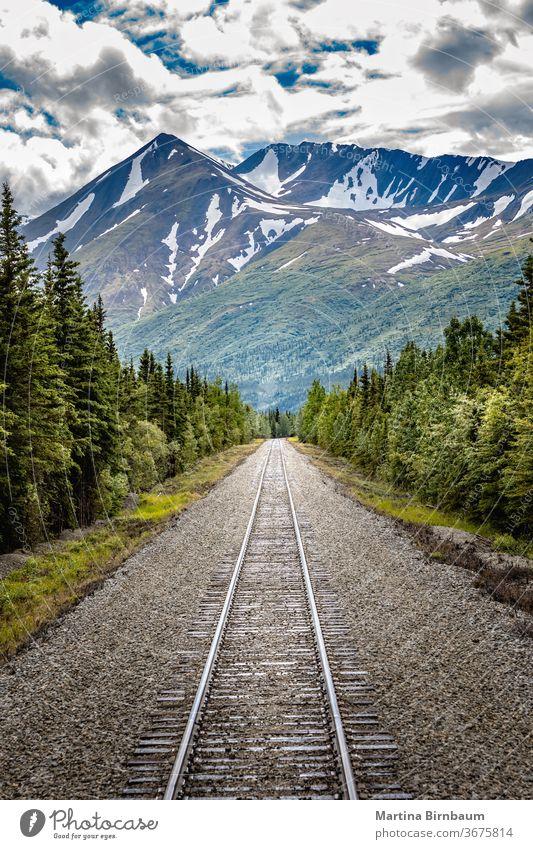 Eisenbahn zum Denali-Nationalpark, Alaska mit beeindruckenden Bergen Reise denali national Park Hintergrund schön blau braun Farbe Wald grün Landschaft