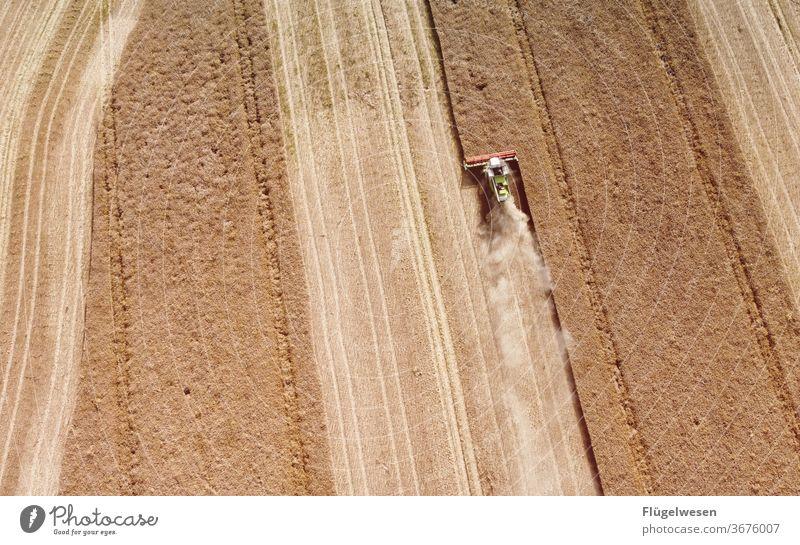 Ernte 23 Erntedankfest ernten Erntehelfer Erntezeit erntemaschine erntereif erntend erntegrad Ernte einbringen mähen Mähdrescher Weizenfeld Getreide