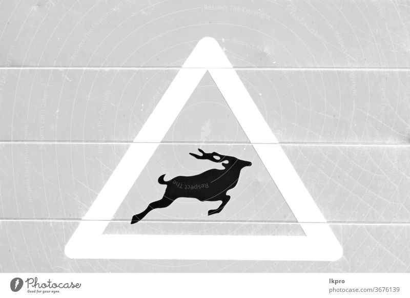 in Südafrika Nahaufnahme des Schildes Zeichen Gefahr Bach Ermahnung Flußpferd weiß Tierwelt gefährlich Natur Nilpferd Park Afrika Süden Hintergrund natürlich