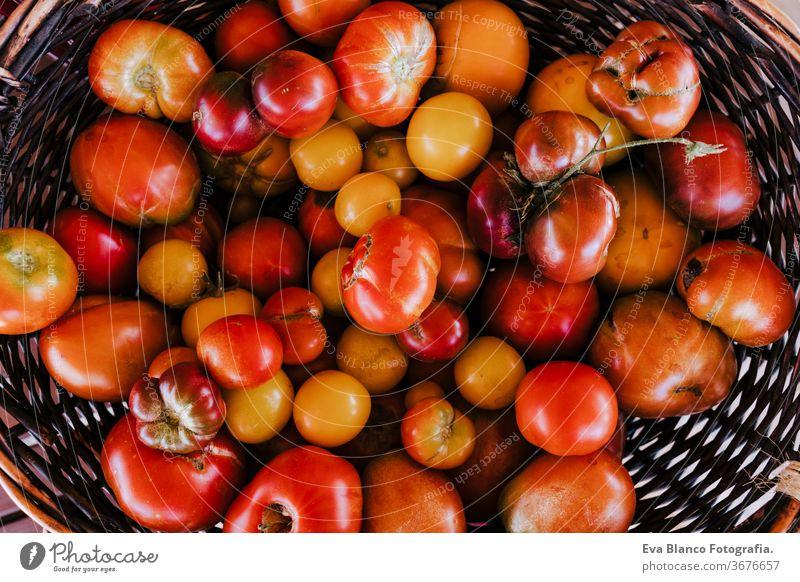 Draufsicht auf eine Holzkiste mit Tomaten, Konzept der gesunden Ernährung. Natur Gemüsegarten niemand rot Gesundheit Lebensmittel Gartenarbeit essbar Single
