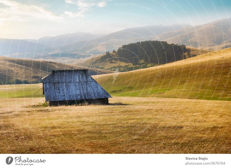 Berglandschaft in schöner Spätsommer- oder Herbstumgebung Ackerbau Tier Scheune Land Landschaft Kuh Kühe Ernte Ausflugsziel Umwelt fallen Bauernhof Feld Gras
