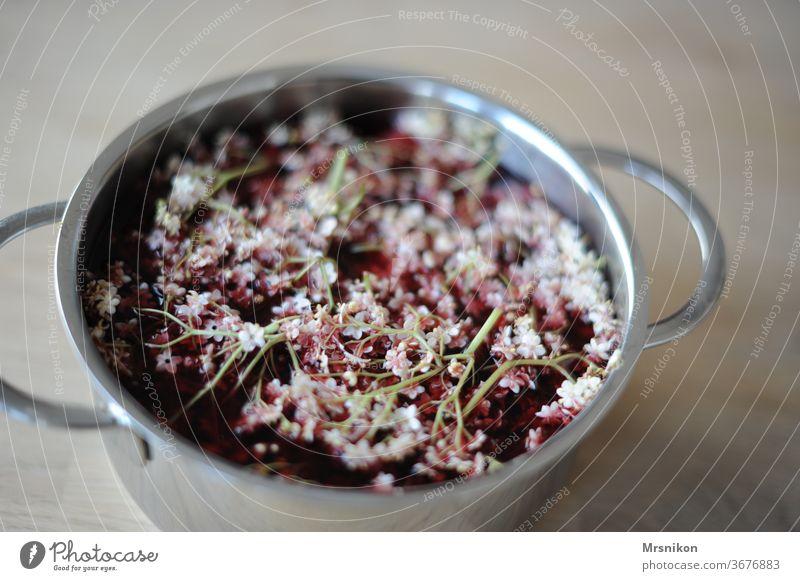 Holunder Holunderblüte Gelee Blüte Dolde Garten Sommer weiß rot Topf sirup lecker Küche Farbfoto Lebensmittel Getränk Gesunde Ernährung Bioprodukte Gesundheit