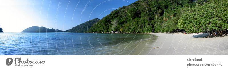 Koh Surin Thailand Strand Meer Küste Sonne ruhig Palme Sommer Panorama (Aussicht) Weitwinkel Ferien & Urlaub & Reisen Einsamkeit unberührt Ferne grün