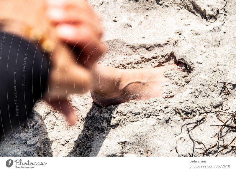 spuren hinterlassen Außenaufnahme Sand Fuß glücklich Glück Familie Zusammensein festhalten Finger Gefühle nähe gemeinsam Vertrauen Zufriedenheit beschützen