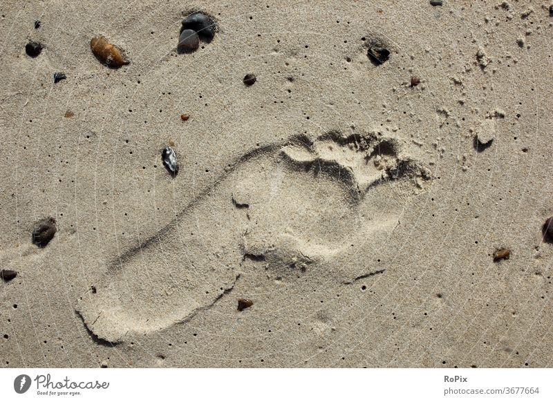 Barfuss am Strand ist immer schön. beach Küste Meer sea Ozean Sandstrand Spur Fuß foot Fußabdruck Urlaub Küstenwanderung Erholung Ruhe Entspannung Strandurlaub