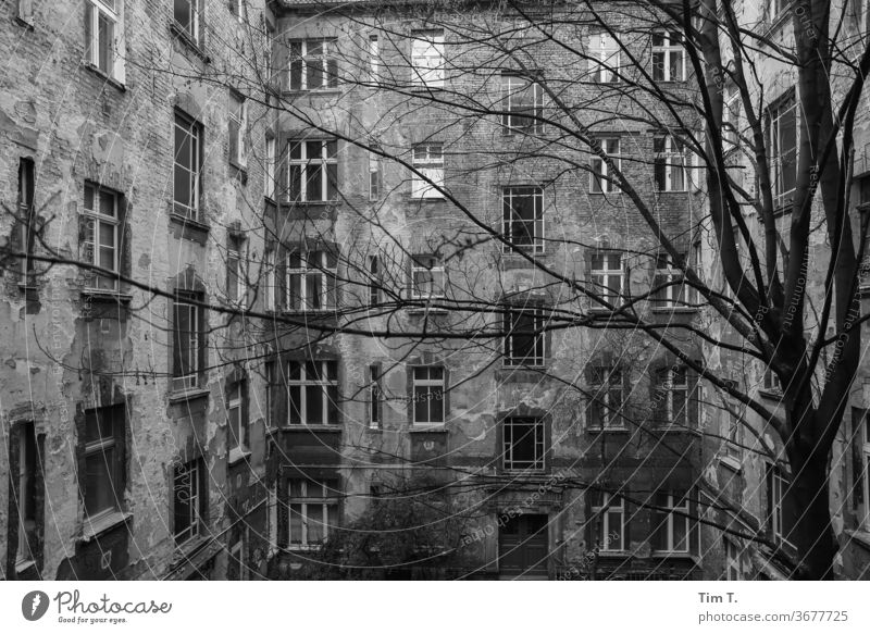 Hinterhof Berlin Prenzlauer Berg Schwarzweißfoto Hof Menschenleer Tag Stadtzentrum Hauptstadt Altstadt Außenaufnahme Haus Fenster Altbau Bauwerk Gebäude Fassade