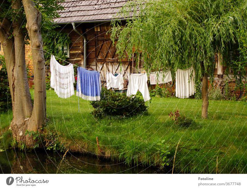 Waschtag - oder Eine Wäscheleine mit aufgehängter Wäsche im Spreewald. Die Buchse ist der Hit! Wäscheklammern Seil Leine trocknen Sauberkeit Bekleidung