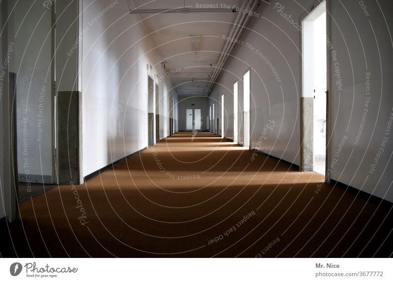 Langer Flur in einem leerstehenden Gebäude Licht Innenarchitektur lost places geheimnisvoll Tür Unendlichkeit Durchgang lang im Innenbereich Wand Perspektive