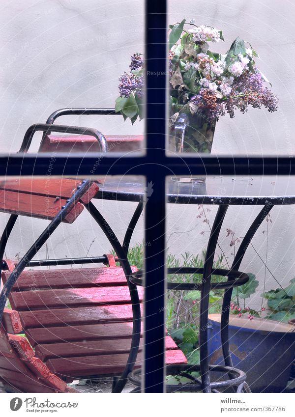 prager frühling im hinterhof Einsamkeit Frühling Garten Vergänglichkeit Romantik Balkon Hinterhof welk Fliederbusch Fensterkreuz Tisch Gartenstuhl Gartentisch