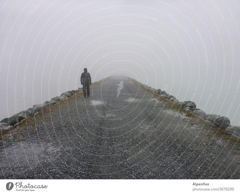 back to the roots | zurück in die Ursuppe Nebel ungewiss Ungewisse Zukunft Außenaufnahme ins licht Wege & Pfade letzter weg Tod Todesangst gehen geheimnisvoll