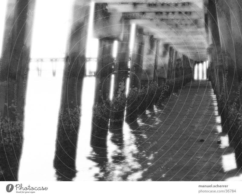 cage Käfig Meer Anlegestelle gefangen Unendlichkeit schwarz weiß Brücke Schwarzweißfoto Wasser Justizvollzugsanstalt Stab Gang