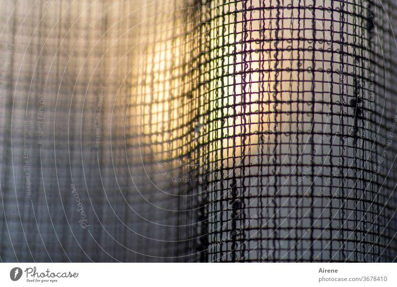 lichtdurchlässig Gardine Stoff Netz Sonnenlicht Vorhang Fenster Dekoration & Verzierung abstrakt Netzwerk Hoffnung durchsichtig Abend Dämmerung Sonnenuntergang