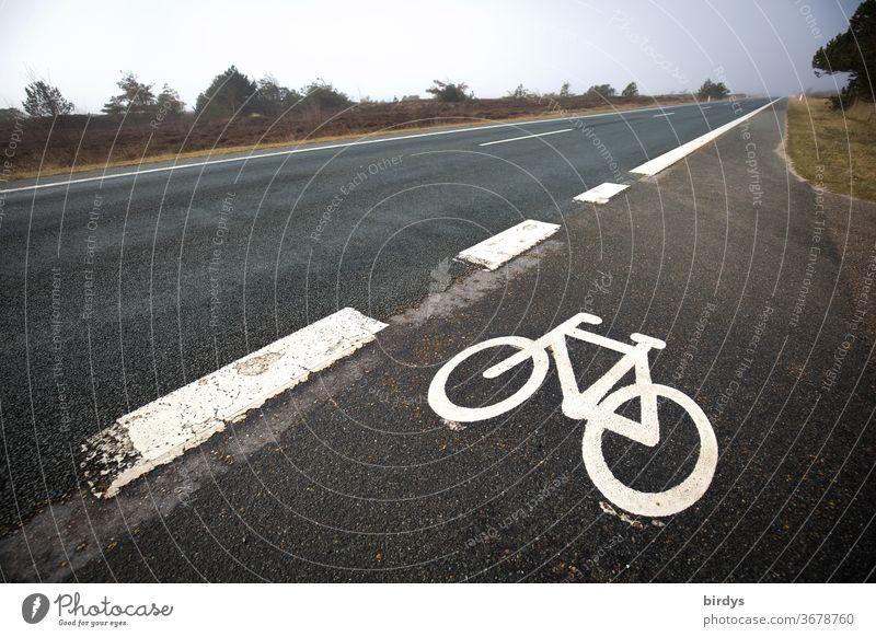 Fahradweg neben einer Schnellstraße. Kennzeichnung Fahrradweg Straße Fahrbahnmarkierung Symbol Gefahr Landstraße Infrastruktur paralell Verkehrswege
