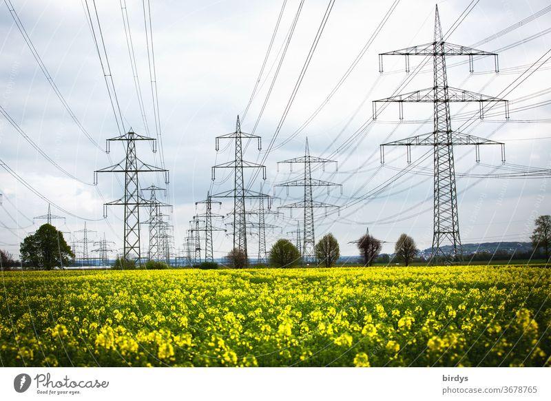Stromtrasse über einem Rapsfeld. Erneuerbare , grüne Energie. Hochspannungsleitungen, Überlandleitungen Energiewirtschaft Strommasten viele Elektrizität