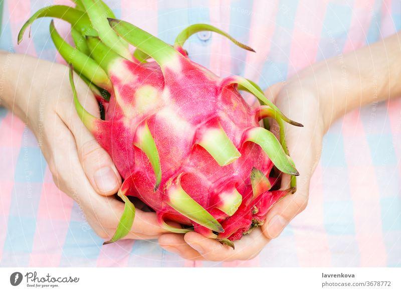Nahaufnahme der Hände eines Mädchens mit Pitayafrucht. Exotische asiatische Früchte. Selektiver Fokus. Kaktus Dessert Diät Drache essen exotisch Lebensmittel