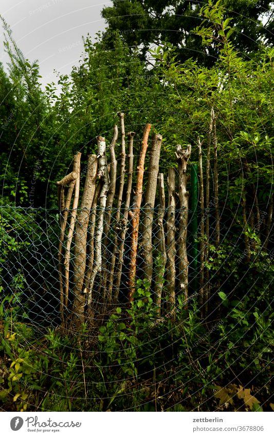Äste hinter Maschendraht ast baum garten kleingarten kleingartenkolonie menschenleer natur pflanze ruhe schrebergarten sommer stamm strauch textfreiraum