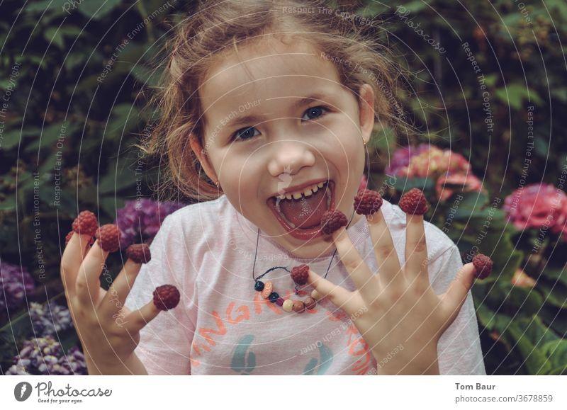 Mädchen isst Himbeeren von den Fingern frech Essen lachen grinsen issts Kind Freude Porträt Gesicht süß niedlich von Hand Mensch bereits Blick in die Kamera
