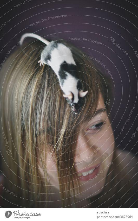 farbmaus auf dem kopf einer jugendlichen Kind Mädchen Jugendliche Teenager Pubertät Haare & Frisuren Gesicht jung Kopf skurril Porträt Lächeln Tier Haustier