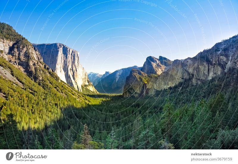 Yosemite-Nationalpark Forest Valley Yosemite NP Wald Kiefer Tal Klippe Berge u. Gebirge Yosemit-Tal Steine Panorama Totale Fluchtpunkt Himmel sonnig Landschaft
