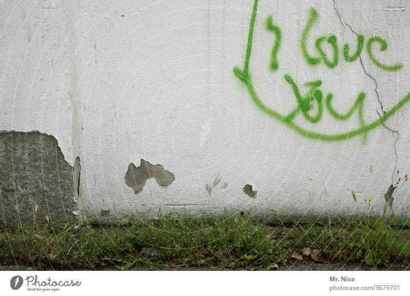 Liebesbekundung Graffiti Wand Schriftzeichen Liebeserklärung Mauer Liebesgruß Putz Gras Unkraut Pflanze Gefühle grün weiß Sympathie Symbole & Metaphern