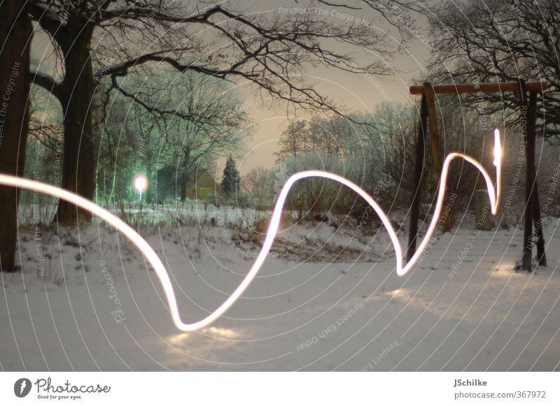 lighting up the night Energiewirtschaft Winter Baum ästhetisch Zufriedenheit Geschwindigkeit Kunst Bewegung Seilbahn Park Lichtschein Belichtung