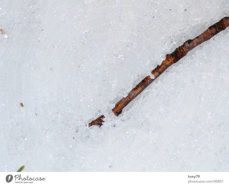 Schneestock Winter glänzend nass trocken Stock