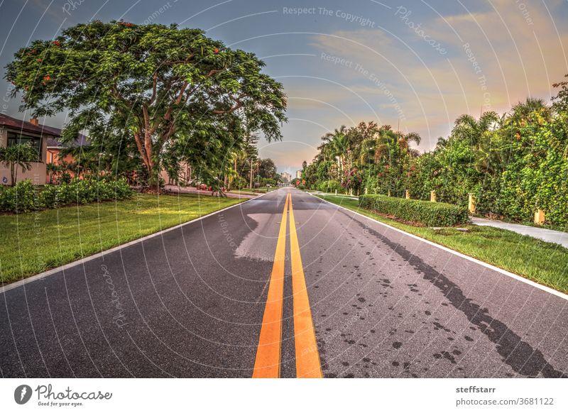 Straßenabschnitt entlang des Vanderbilt Drive im Naples Park Reise Fahrbahn Weg reisen Neapel Florida Küste Küstenlinie Küstenstreifen Landschaft Natur