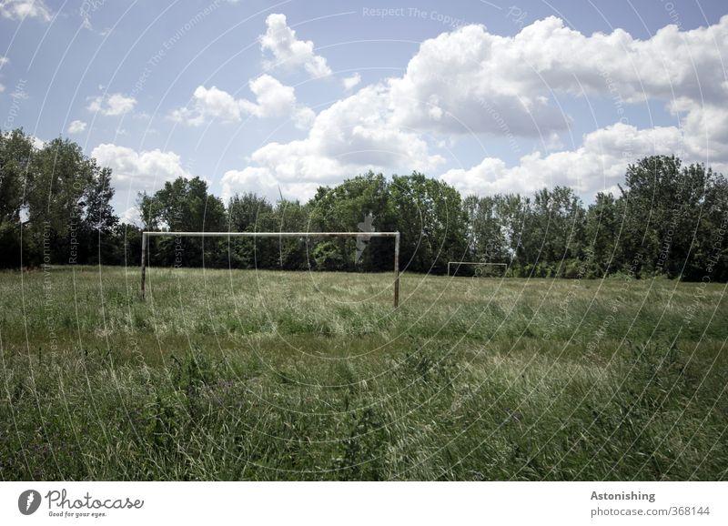 der alte Bolzplatz Sport Ballsport Fußball Sportstätten Fußballplatz Umwelt Natur Landschaft Pflanze Himmel Wolken Sommer Wetter Schönes Wetter Wärme Baum Gras