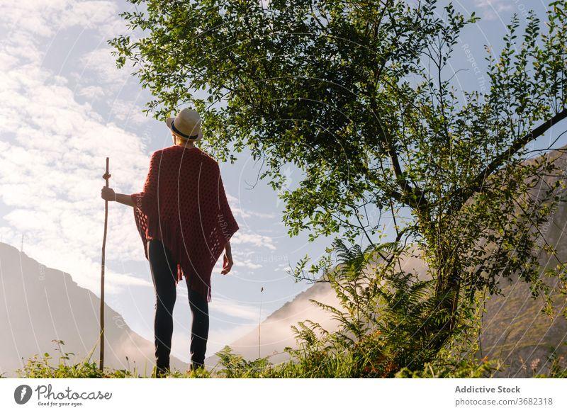 Reisender mit Holzstock im Hochland Berge u. Gebirge Morgen genießen Sonnenaufgang Wanderer Fernweh hölzern Personal Landschaft Freiheit friedlich idyllisch