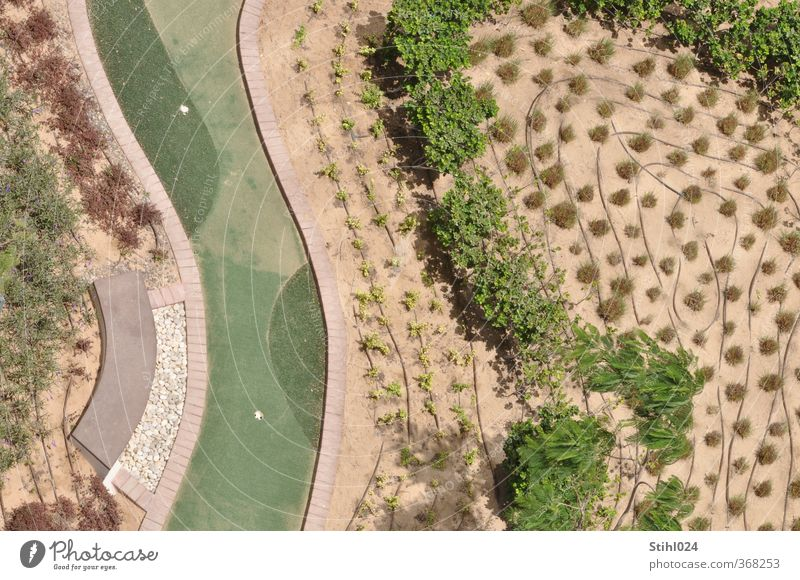 bewässerter Garten Gärtner Gärtnerei Landschaft Pflanze Dürre Baum Sträucher Grünpflanze Park Wüste Gartenbau dehydrieren Wachstum heiß trocken braun grau grün