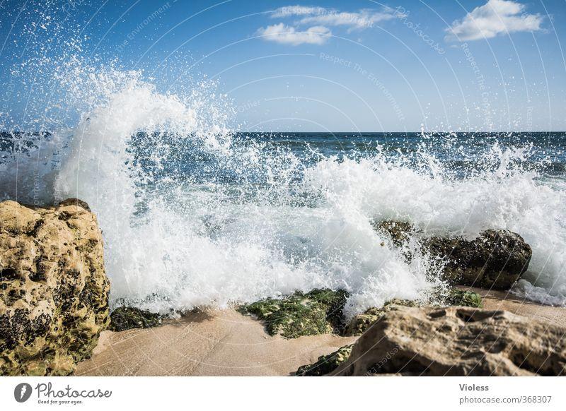 cool water Himmel Natur Ferien & Urlaub & Reisen Wasser Sommer Meer Erholung Landschaft Freude Strand kalt Küste Stein träumen Wellen Kraft
