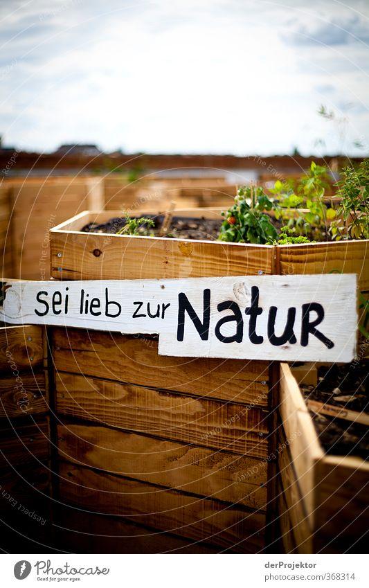Sei lieb zur Natur Umwelt Sommer Schönes Wetter Pflanze Garten Stadtzentrum Menschenleer Parkhaus Dach Sehenswürdigkeit Gefühle Stimmung Freude Glück