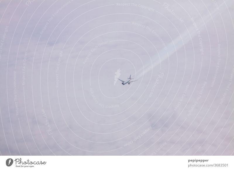 Flugzeug über den Wolken Himmel Luftverkehr Ferien & Urlaub & Reisen Flügel fliegen Ferne Freiheit Passagierflugzeug Tourismus Verkehrsmittel Menschenleer