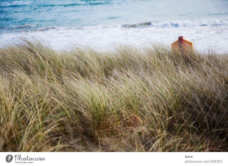 Hinter den Dünen Umwelt Natur Landschaft Sand Wasser Sommer Pflanze Gras Wellen Küste Strand Meer Schilder & Markierungen Hinweisschild Warnschild einfach