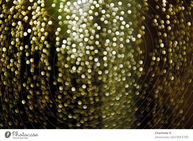 Regentropfen | die an mein Fenster klopfen unscharf glitzern Wassertropfen Tropfen nass Detailaufnahme grün gold golden Farbfoto Wetter Fensterscheibe