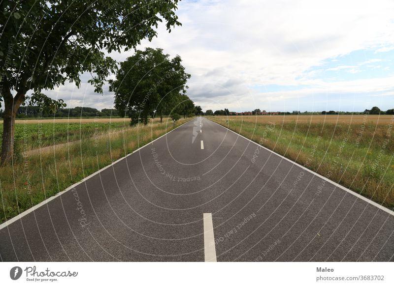 Ländliche Asphaltstraße wird am Horizont landen Hintergrund Land Landschaft Straße ländlich Himmel reisen blau Laufwerk Feld Gras Natur malerisch Sommer Weg