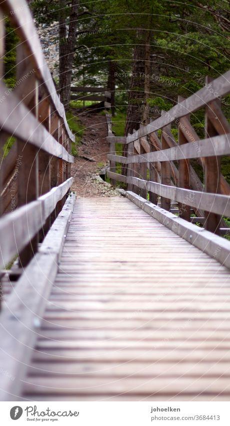 Holzweg Brücke Holzbrücke Geländer holzweg Wald wandern überbrückung Wege & Pfade Froschperspektive wanderweg Nadelwald Brückenschlag braun grün Bauwerk