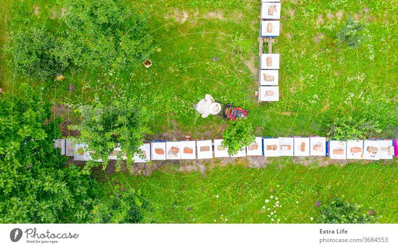 Luftaufnahme eines Imkers, der mit einem Benzinrasenmäher einen Rasen in seinem Bienenstock mäht oben Antenne Bienenkorb Bienenzucht angeordnet Verschlussdeckel