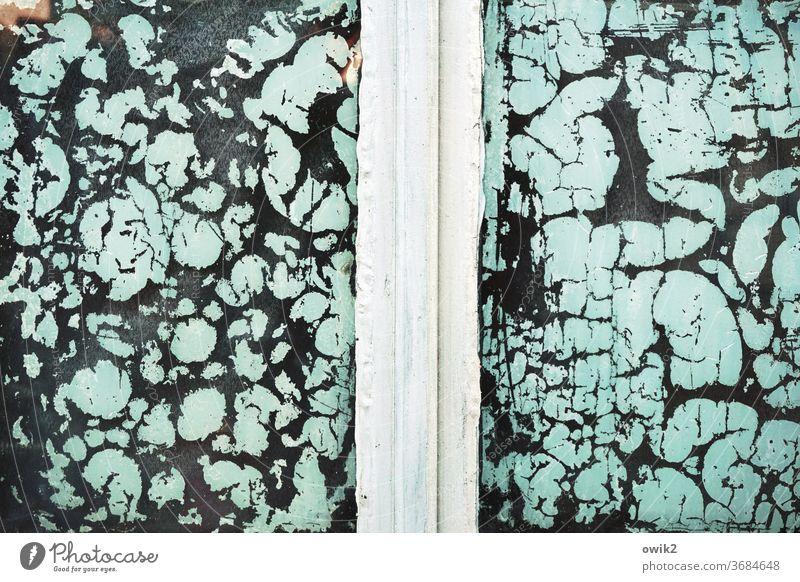 Freie Formen Fenster alt Verfall Vergänglichkeit trashig Nahaufnahme Glas Schaden Zerstörung Fassade Strukturen & Formen abblättern Farbe Zahn der Zeit Riss