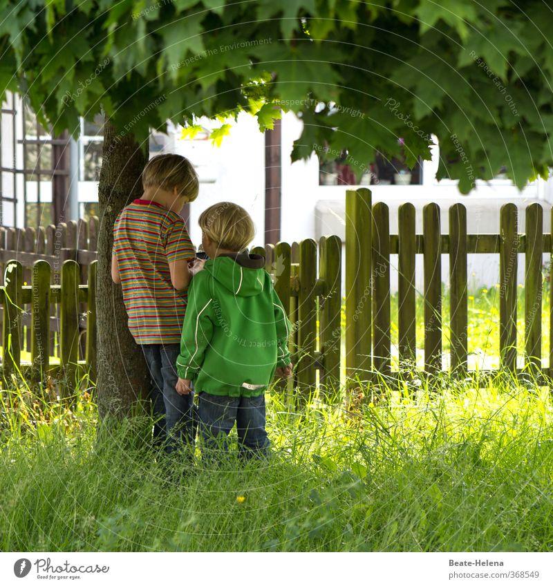 Nimm mich mit ins Land der Abenteuer Mensch Kind Natur grün weiß Sommer Baum Haus Freude Junge Gras Spielen Garten Freundschaft Freizeit & Hobby Wohnung