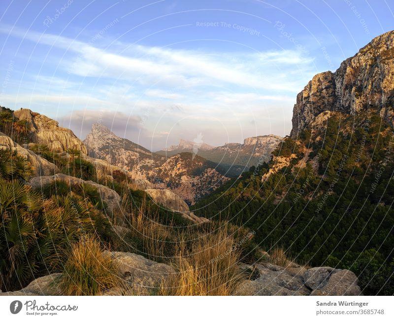 Sonnenuntergang auf Mallorca Berge Licht Sommer Sommerurlaub Landschaft keine Menschen Ferien & Urlaub & Reisen Berge u. Gebirge Himmel Natur Menschenleer