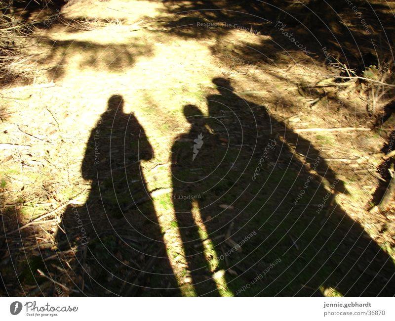 Schatten im Wald Mensch Natur Sonne Menschengruppe Freundschaft wandern Spaziergang Waldboden gehen