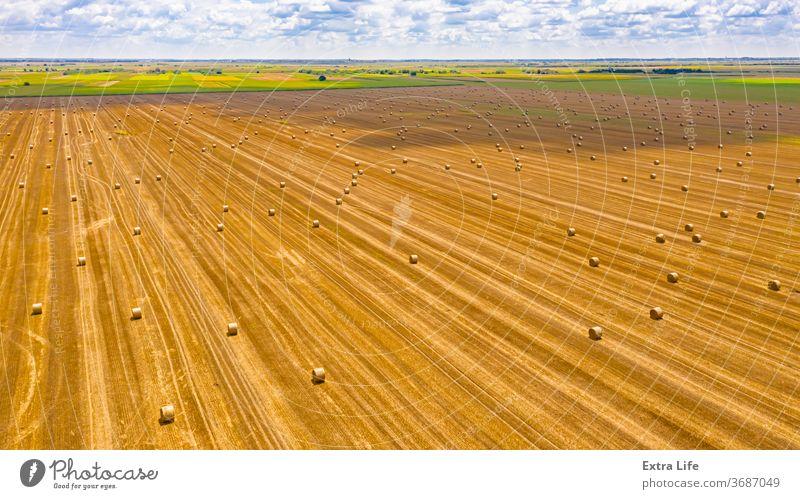 Luftaufnahme von ausgekleideten, runden Strohballen auf dem landwirtschaftlichen Feld oben quer Antenne Ackerbau Ballen Müsli Landschaft Ernte Dröhnen trocknen