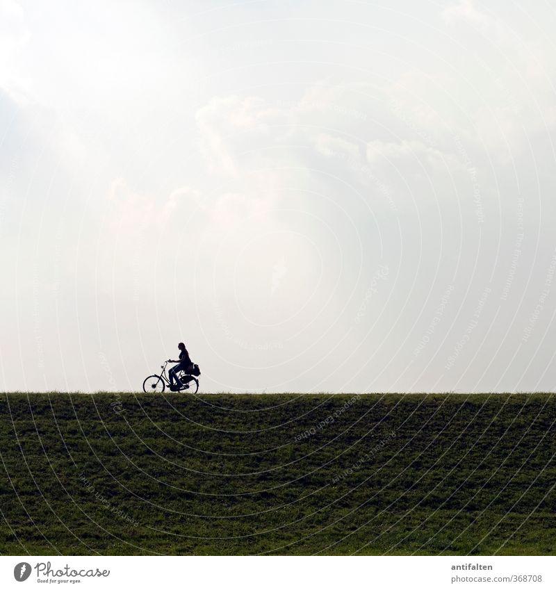 sie fährt Fahrradfahren feminin Frau Erwachsene Körper 1 Mensch 18-30 Jahre Jugendliche Landschaft Himmel Wolken Sonnenlicht Frühling Sommer Rheinauen
