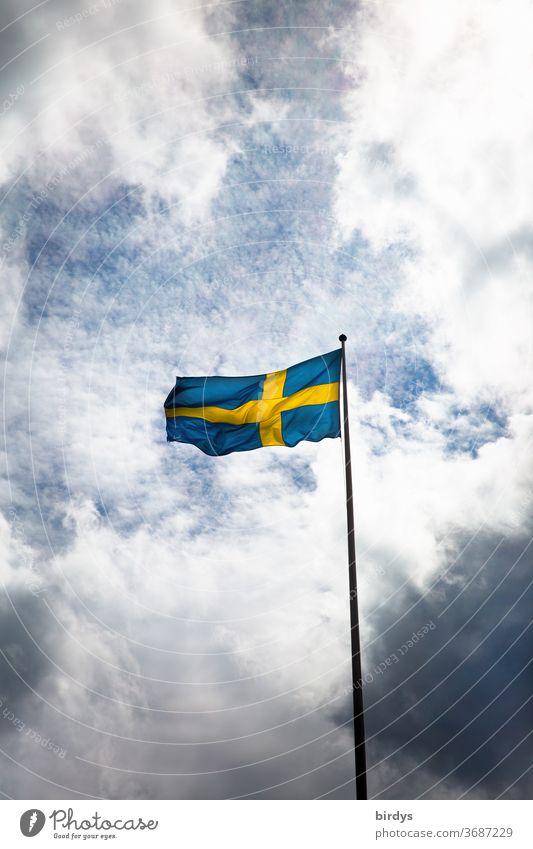die schwedische Flagge weht im Wind vor Himmel und Wolken Schweden Nationalflagge Corona Patriotismus Fahne wehen Fahnenmast düster blau gelb Skandinavien