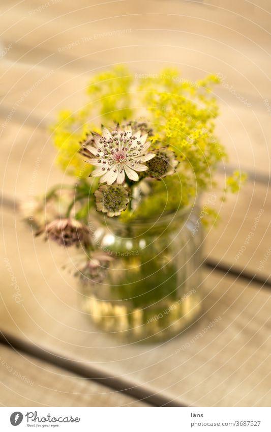 Blumen in Vase Blumenstrauß Blüte Dekoration & Verzierung Menschenleer Blühend Farbfoto Tisch Gastronomie