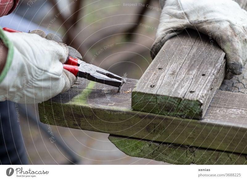 Heimwerker zieht alten Nagel mit Zange aus verwittertem Holz Hand Handschuh festhalten Arbeitshandschuhe Nagelzange Mann reparieren heimwerken Handwerker