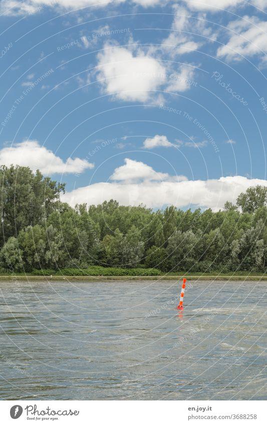 Der Rhein Fluss Flussufer Strom Wasser fließen Fließgewässer Boje Markierung Landschaft grün Wald Schilder & Markierungen Schifffahrt Gefahr Gefahrenstelle